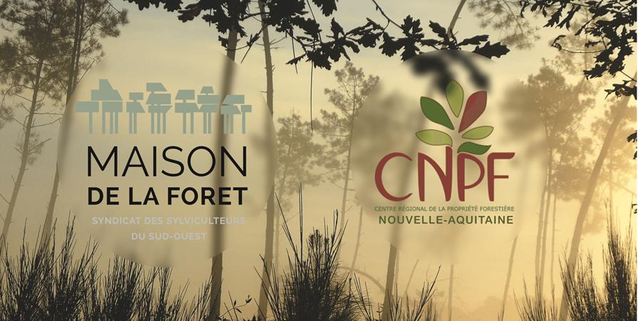 AFTER-WORK : l'Organisation de la filière bois du Sud-Ouest - Forêt Sphère