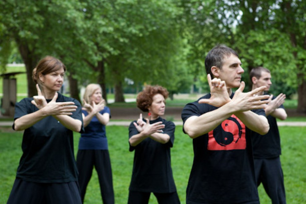 Stage de Qi Gong adulte  - Ecole Phenix et Dragon