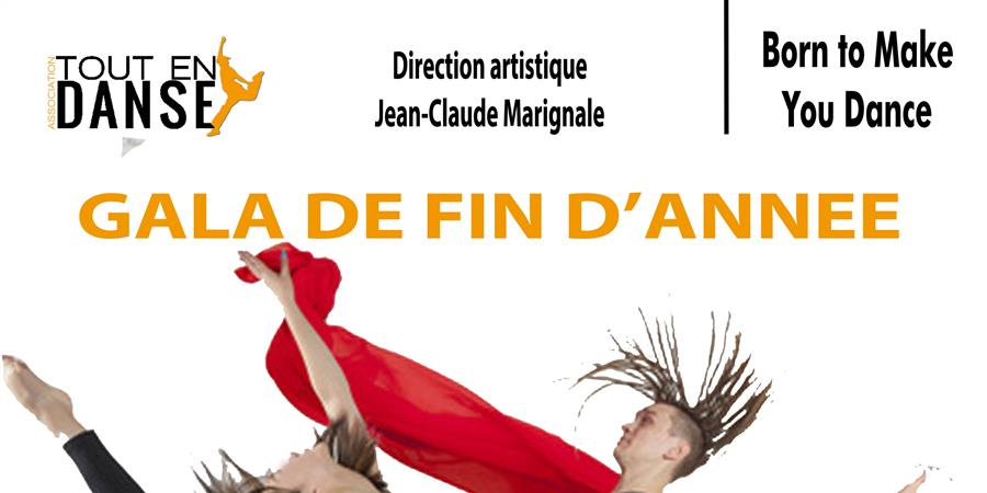Gala Tout En Danse 2017 - TOUT EN DANSE
