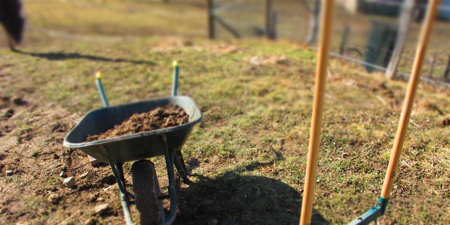Atelier d'éco-jardinage : débuter son potager - Ecopole