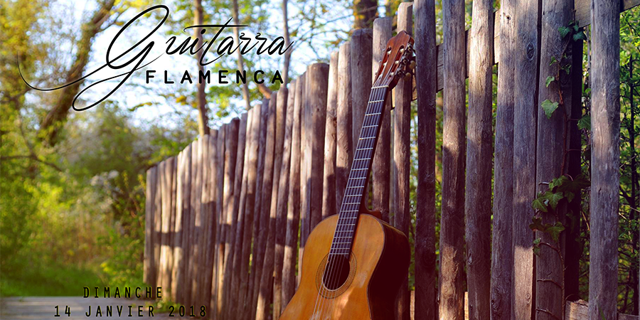 Guitarra Flamenca - Ephemer'ID