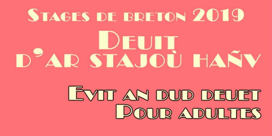 Staj 2019 - Naoned e brezhoneg / Stage 2019 Nantes en breton - Skol an Emsav