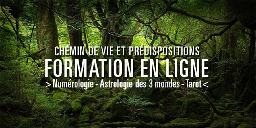 Chemin de Vie et prédispositions - Session 1 du 27/03/2017 au 30/03/2017 - La Salamandre