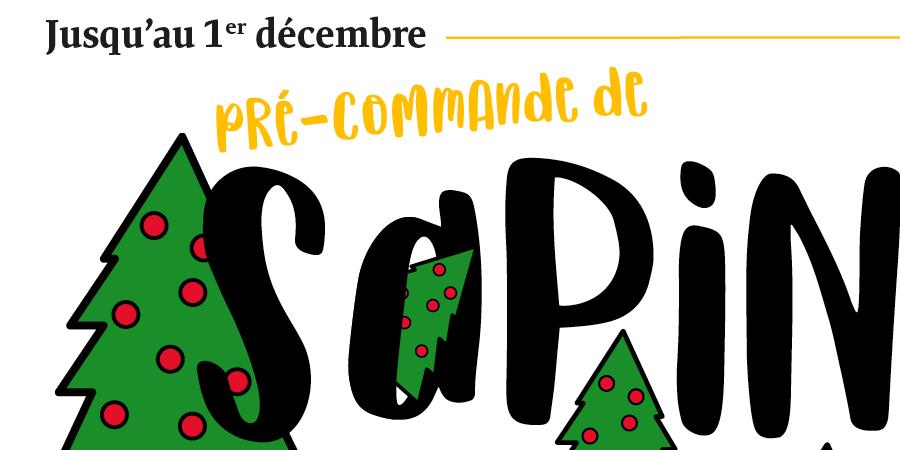 Pré-commande de sapins 2018 - Sou des écoles de Légny