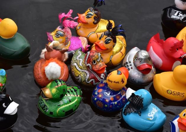 Business Ducks Villeneuve-Loubet - DuckRace France