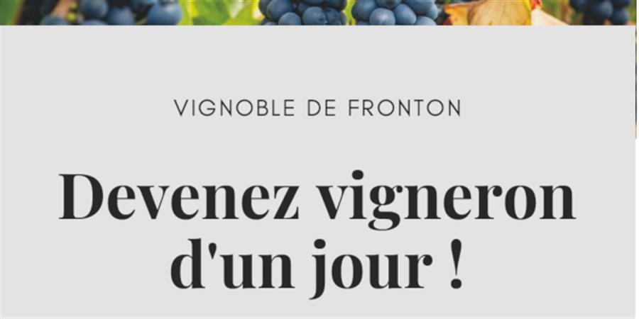 Devenez vigneron d'un jour ! - IVSO Section Fronton