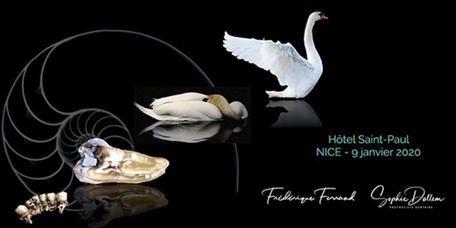 Soirée BioTeam Nice «La céramique dans tous ses états» - BIOTEAM NICE
