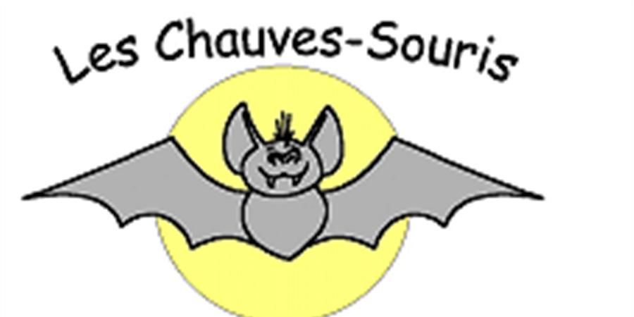 Balade gourmande animée - Chauves-Souris