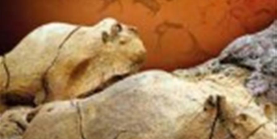 """Atelier """"la vie au paléolitique"""" - Nonsc'Ô Toulouse"""