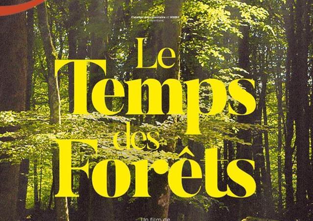 Le Temps des Forêts La Bergerie fait son cinéma!