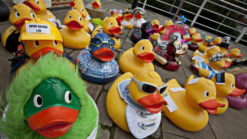 Business Ducks Vésubie - DuckRace France