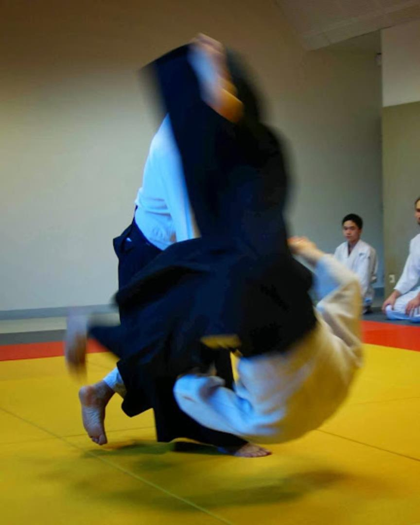 Aikido  - NAKAIMA association