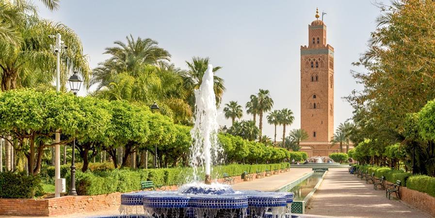 Marrakech 2020 - Afarcot