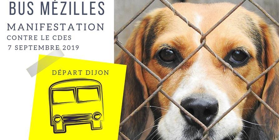 Transport Dijon-Mézilles - Combactive