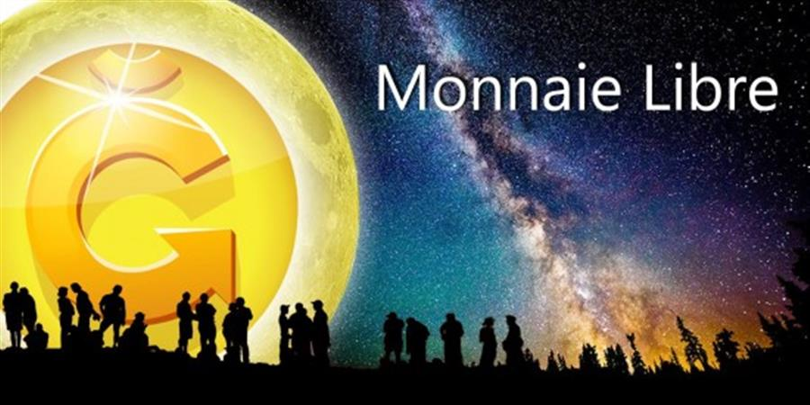 Conférence sur la Monnaie Libre G1  - MALE'VA