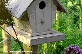 """Cours de jardinage : """"Accueillir les oiseaux et auxiliaires au potager"""" - École du Jardinage en Carrés - Centre d'agro-écologie"""