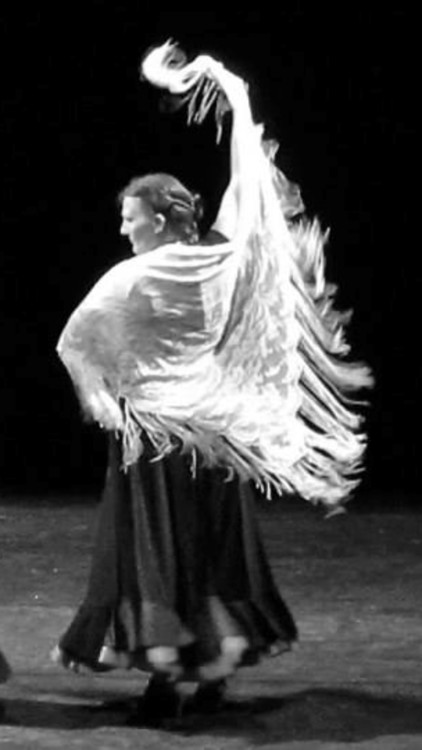 Tribal Flamenco Fusion - Taylamara Dance & Arts