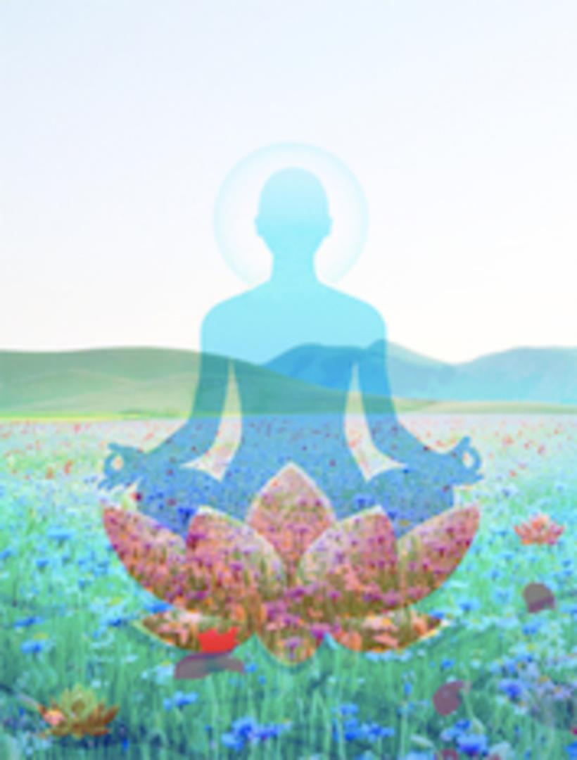 Prolongez l'énergie de l'été ! - Nandini Yoga