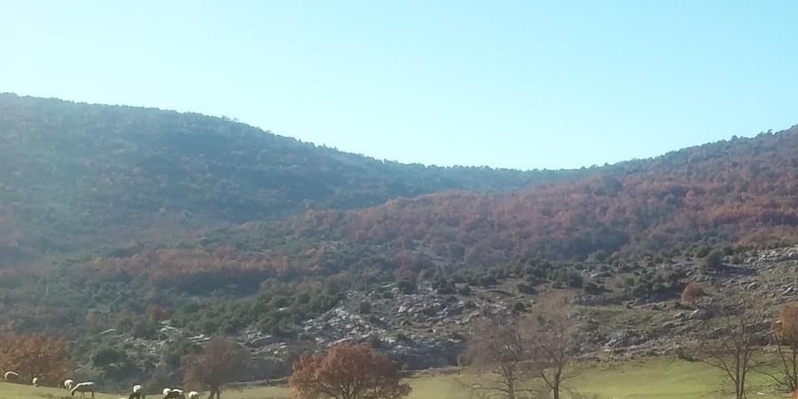 Randonnée journée - Le plateau de la Malle - Samedi 10 novembre - Rando d'Azur