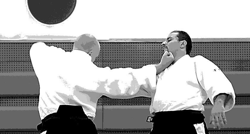 Stage d'Aïkido animé par Olivier GAURIN - Cercle d'Aïkido des Marronniers