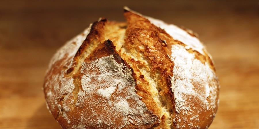 Faites votre pain au levain Session 1 - OBJECTIF TERRE 77