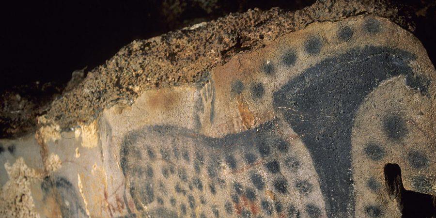 Visite guidée grotte du Pech Merle - IEF 46