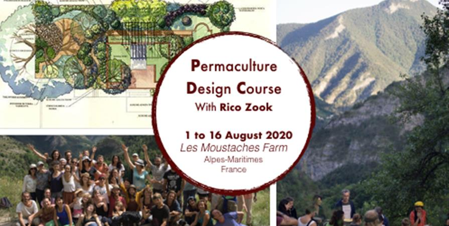 Permaculture Design Course with Rico Zook / August 2020 - Permacultive