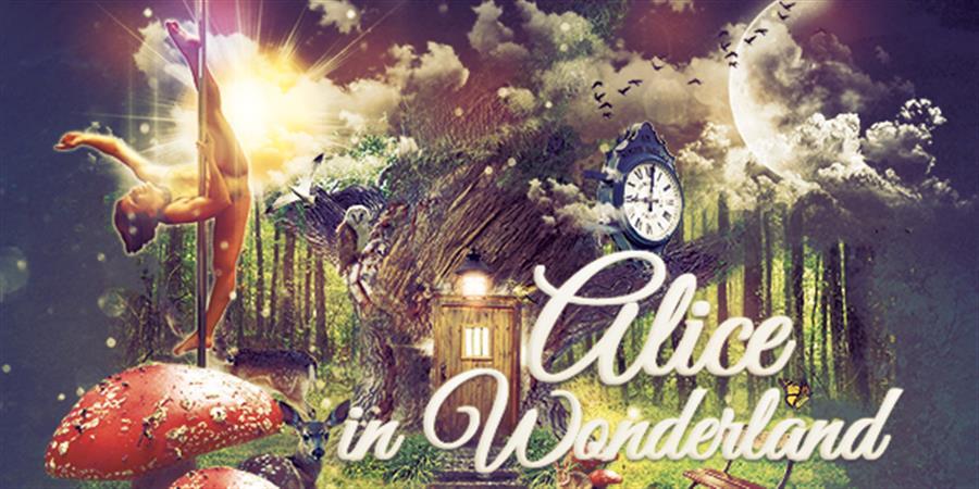 Alice in Wonderland - POLE DANCE GOURDON QUERCY