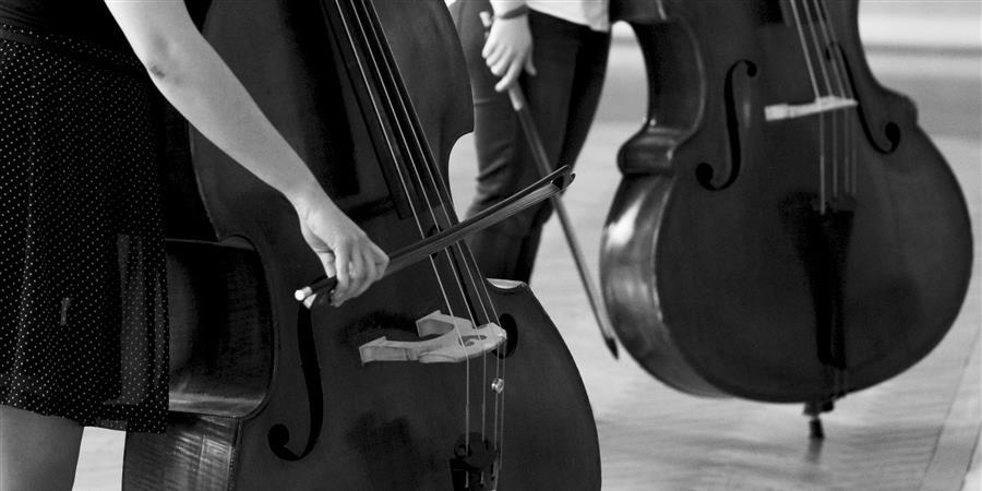 Formation Administration culturelle - Musiques Éclatées