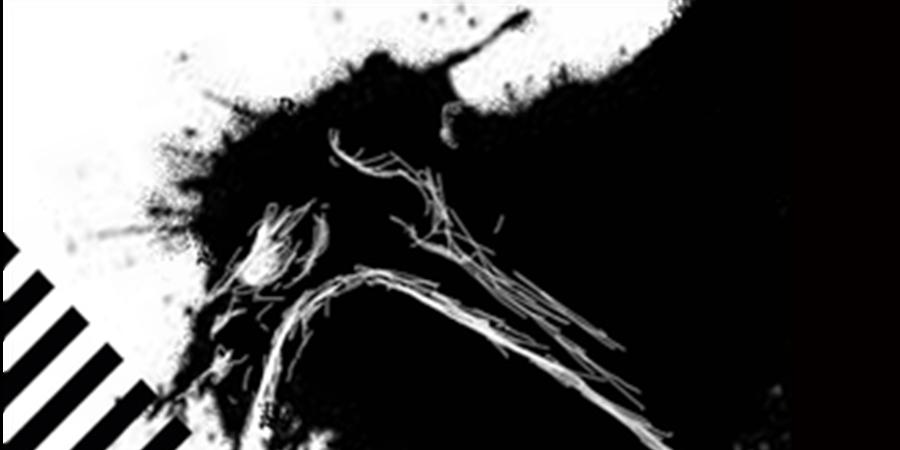 Le Portrait – Théâtre de l'Hydre / Festival de Caves  - Mixeratum ergo sum