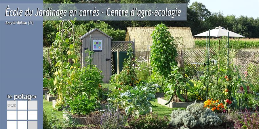 Visite du Potager en carrés à la française - École du Jardinage en Carrés - Centre d'agro-écologie