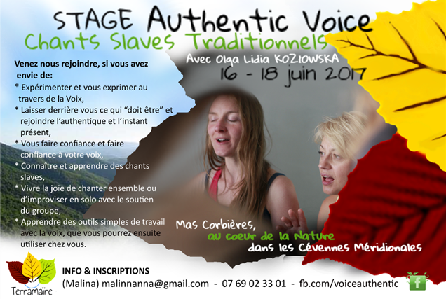 Stage Authentic Voice – Chants slaves traditionnels - Les Amis de Terramaïre