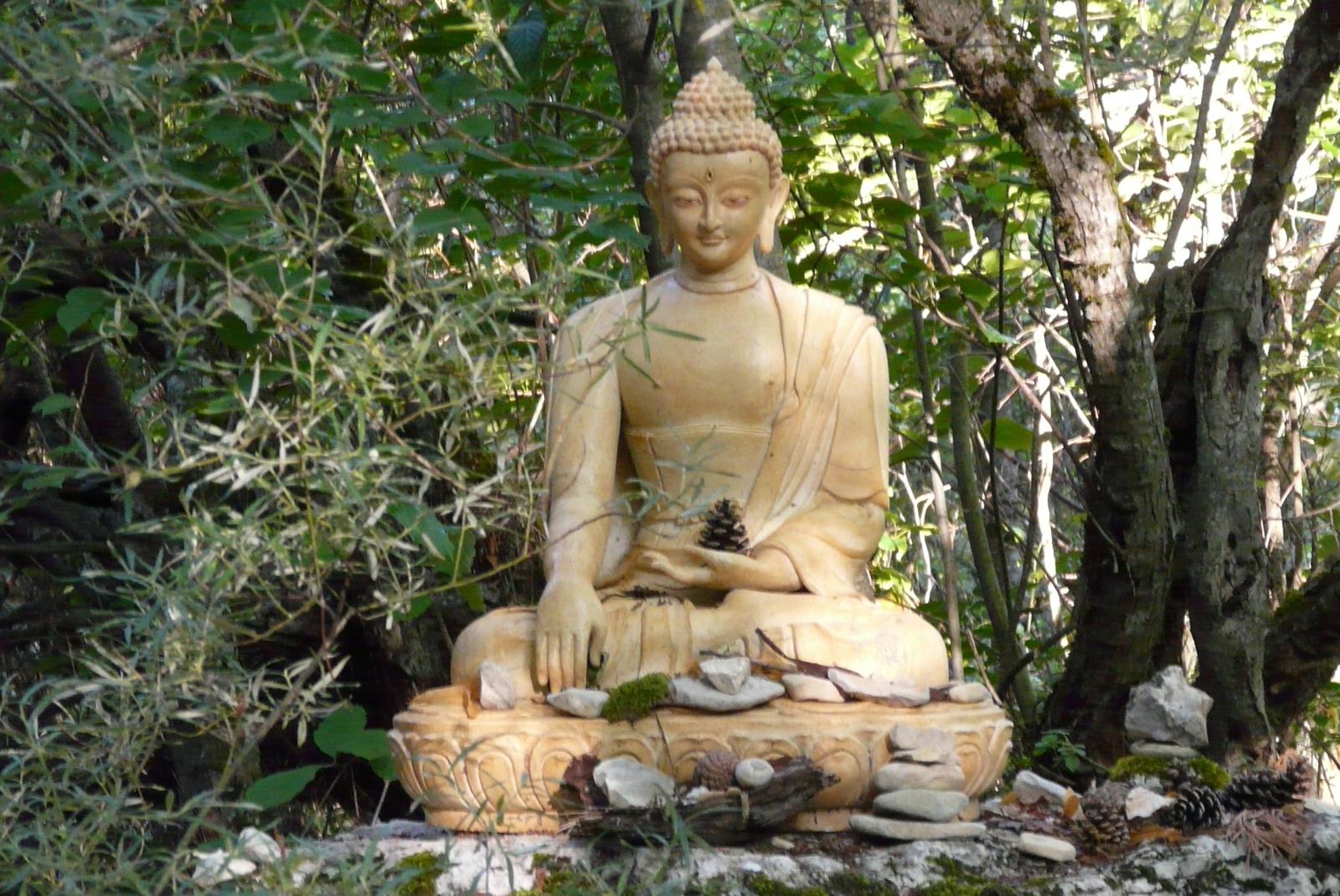 Sophro Qi Gong - Association l'Arbre de Vie