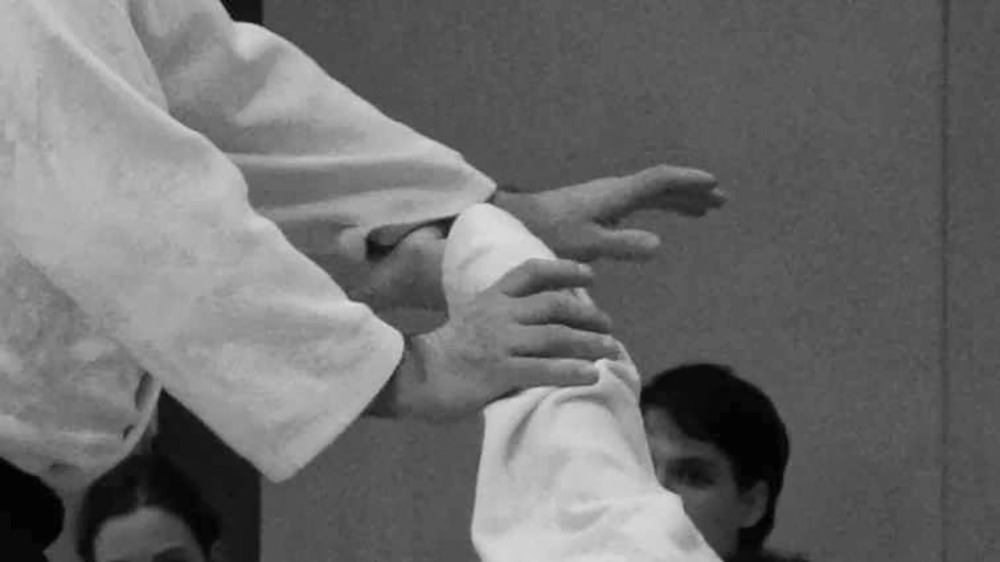 STAGE AIKIDO Avril du 18 AU 22 Avril 2016 EN DRÔME - NAKAIMA association