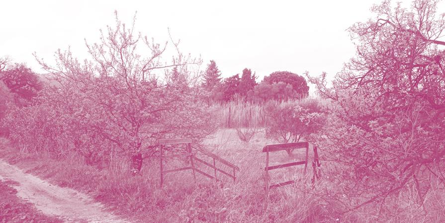 Les coulisses horticoles de l'ouest - Bureau des guides du GR2013