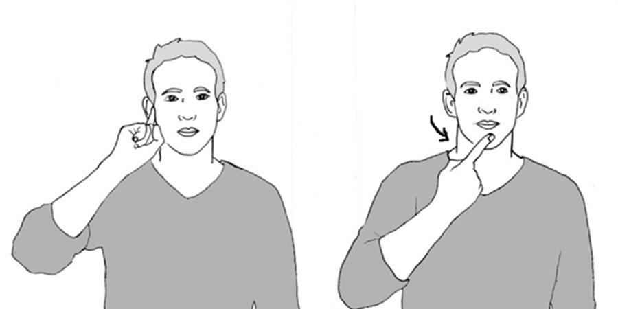 Cycle d'ateliers Langue des signes - Upaya-l'école par Nature
