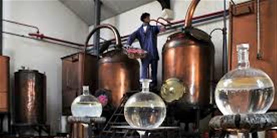 Visite de la parfumerie Molinard et pique nique !  - Anpeip Côte d'Azur