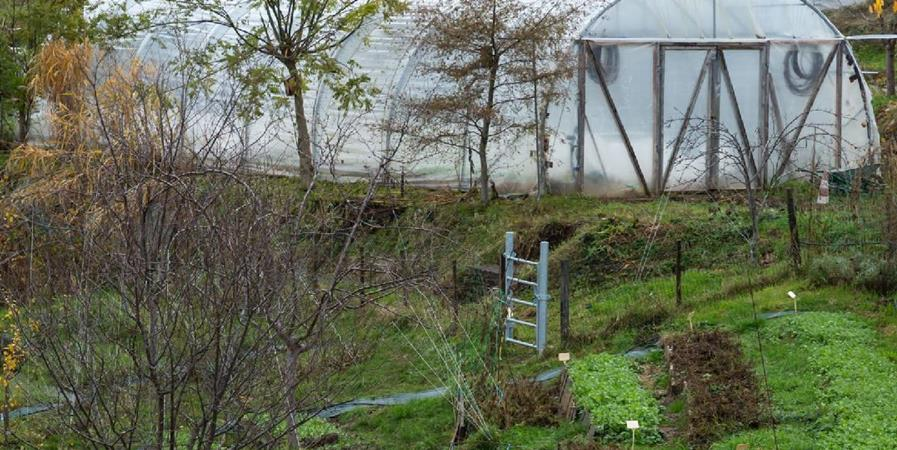 La permaculture une réponse aux enjeux environnementaux - association Monte et Souris