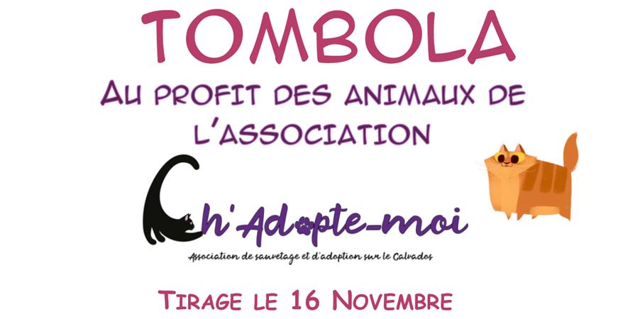 Tombola Ch'Adopte-moi - Ch'Adopte-moi