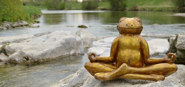 Gérer le stress avec les fleurs de bach, les huiles essentielles et l'EFT - Le Coeur Conscient