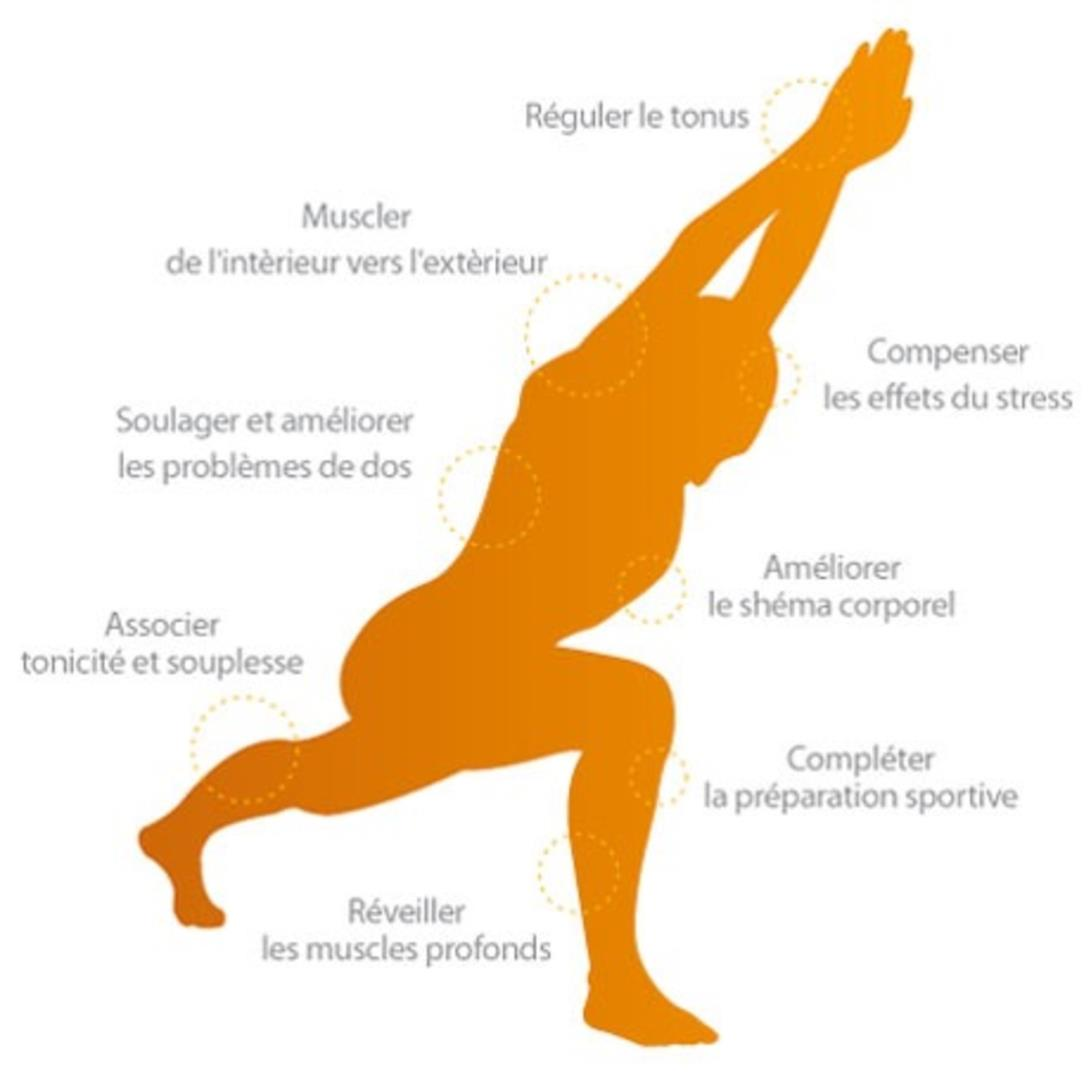 Stretching Postural® - La gymnastique douce autrement - Association WELL - Centre d'Education du Mouvement - La gymnastique douce autrement - dynamique-fluidité-force-détente-bien-être