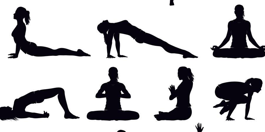 Atelier Hatha yoga de rentrée à Segré - Sattva yoga
