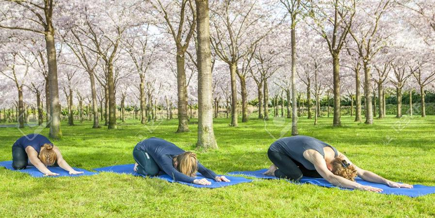 09/06 Yoga Adultes - Tetenler