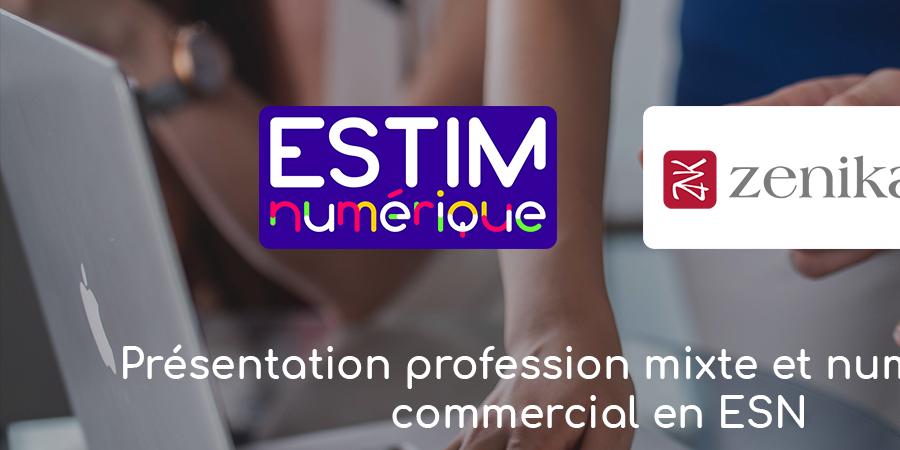 Profession Mixte et Numérique : commerciale en ESN  - ESTIM Numérique