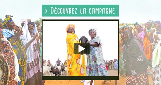 Découvrez notre campagne pour le Sénégal