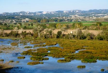 Les Marais des Baux : un territoire préservé