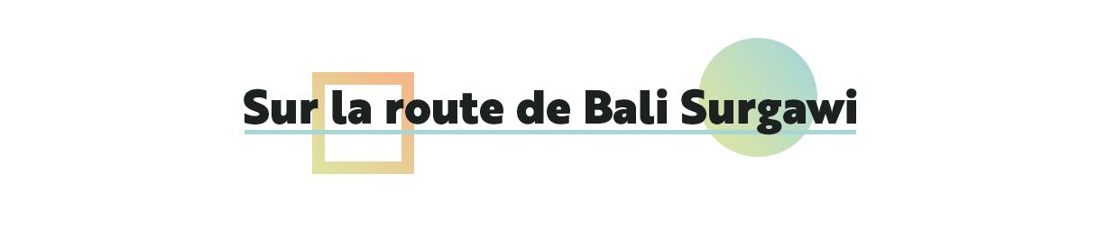 SUR LA ROUTE DE BALI SYRGAW