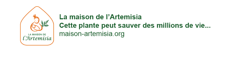 Maison-artemisia.org